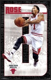 Chicago Bulls - D Rose 14 Posters