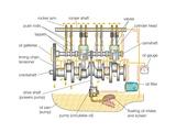 Typical Gasoline Engine Lubrication System Print
