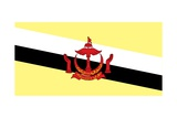 Flag of Brunei Posters