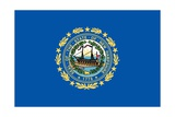 New Hampshire State Flag Prints