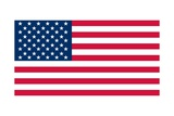 Flag of the United States of America Prints