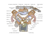 Cross Section of a V-Type Engine Prints