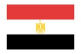 Flag of Egypt Prints
