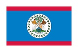 Flag of Belize Prints