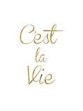 Cest La Vie Posters by Brett Wilson
