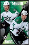 Dallas Stars - Duo 14 Print