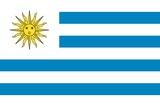 Flag of Uruguay Print