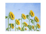 The Sun Worshippers, 2011 Giclee Print by Rebecca Campbell