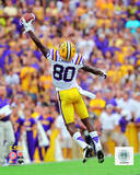 Jarvis Landry LSU Tigers 2012 Action Photo