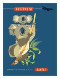 Australia - Koala Bears Wydruk giclee autor Harry Rogers