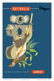 Australia - Koala Bears Plakaty autor Harry Rogers