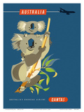 Australia - Koala Bears Prints by Harry Rogers