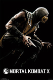 Mortal Kombat X - Scorpion Photo