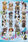 Keith Kimberlin Puppies Headphones 2 Posters af Keith Kimberlin