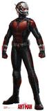 Marvel Ant-Man Lifesize Standup Cardboard Cutouts