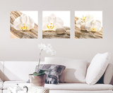 White Harmony Wall Decal Wall Decal