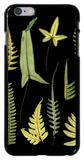 Dramatic Fern IV iPhone 6 Plus Case