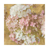 Gilded Hydrangea II Posters by Sue Schlabach