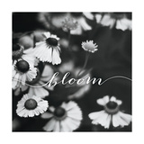 Bloom Print by Laura Marshall