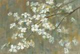 Dogwood in Spring Plakater af Danhui Nai