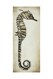 Seahorse II Giclee Print by Sydney Edmunds