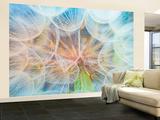 Moments Of Lightness Wallpaper Mural Fototapeta