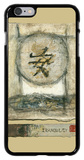 Chinese Tranquility iPhone 6 Plus Case by  Mauro
