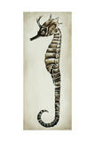 Seahorse I Giclee Print by Sydney Edmunds