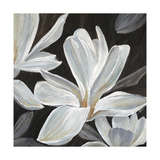 Sweet Magnolia Giclee Print by Farrell Douglass
