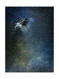 Dragonflies III Giclée-Druck von Kari Taylor