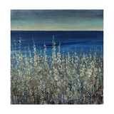 Shoreline Flowers II Giclee Print by Tim O'toole