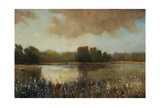 Early Morning Mist Giclee Print by Tim O'toole