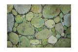 Pebbles Giclee Print by Kari Taylor