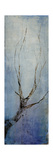 Seasons IV Giclee Print by Kari Taylor
