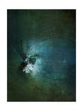 Dragonflies II Giclee Print by Kari Taylor