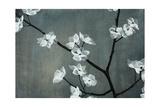 Iridesent Petals Giclee Print by Sydney Edmunds