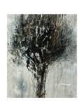 Black Bramble Impression giclée par Jodi Maas
