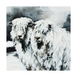 Sheepish Giclee Print by Sydney Edmunds