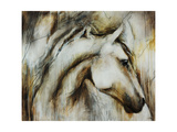 Calm Beauty Giclee Print by Rikki Drotar