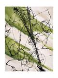 Adaptation VI Giclee Print by Joshua Schicker