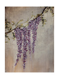 Wisteria Giclee Print by Kari Taylor