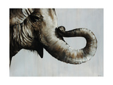 Trunk Space Giclee Print by Sydney Edmunds