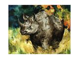 Black Rhino Giclee Print by Sydney Edmunds