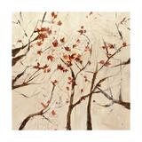 Seasons Color Giclee Print by Jodi Maas