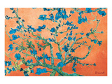 Almond Branches California Posters