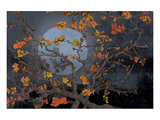 Almond Branches Autumn Posters