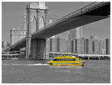 NY Water Taxi under Brooklyn Bridge Prints by Phil Maier