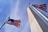 American Flags Surrounding the Washington Memorial on the National Mall in Washington Dc. Photographic Print by  1photo