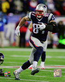 Rob Gronkowski 2014 Playoff Action Photo
