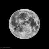 Phases of the Moon III Prints